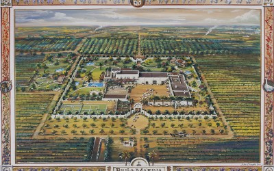 Bellamarina Farm